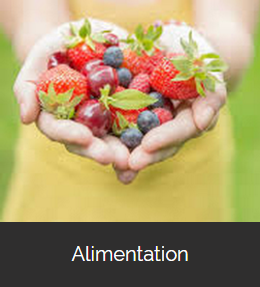 Alimentation, plan alimentaire